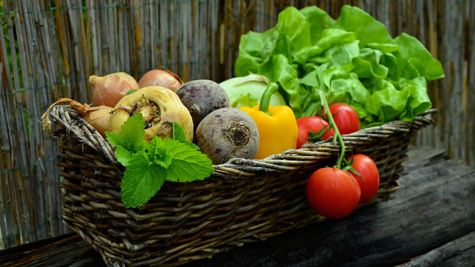 Mangez des fruits et légumes de saison !